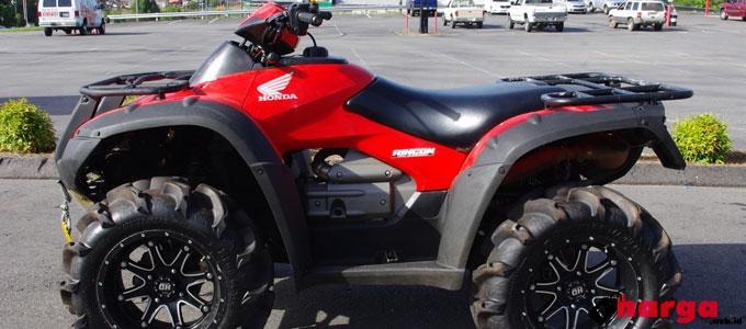 ATV Honda FourTrax Rincon - www.gj18.com