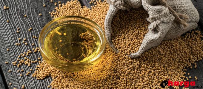 Minyak Mustard - (Sumber: she.id)