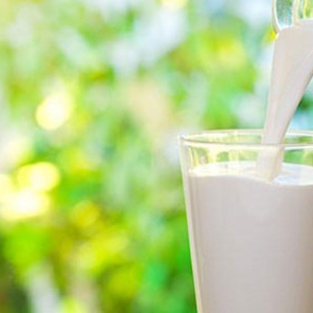 daftar, harga, Jenis, kualitas, produk, produsen, proses, susu