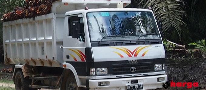 Tata LPT 913 EX2 - www.sinarharapan.co