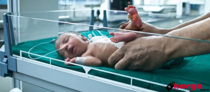 bayi, biaya, informasi, metode, program, prosedur