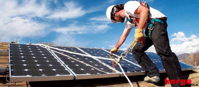 Solar Cell Panel Surya - energyinformative.org