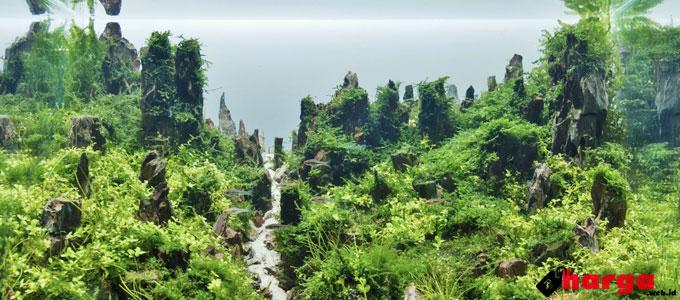 Aquaspace - (Sumber: aquasabi.com)
