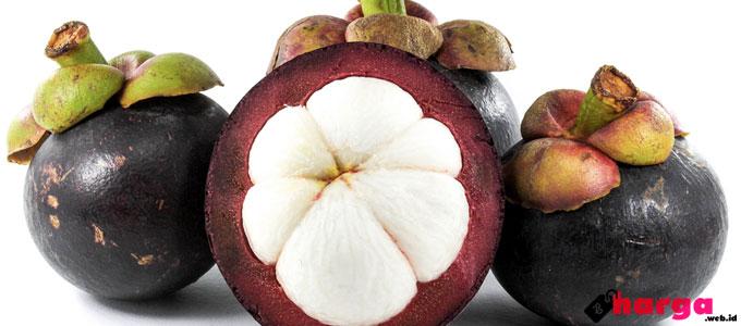 Manfaat dan Harga Ekstrak Kulit Manggis Garcia di Apotik K24