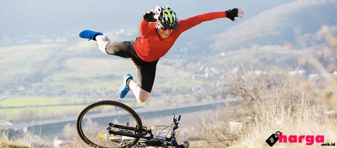 Mountain Bike - (Sumber: icebike.org)