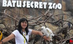 Batu-Secret-Zoo
