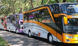 Update Tarif Bus Subur Jaya (Medium dan Big Bus)