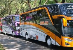Update Terkini Tarif Bus Subur Jaya (Medium dan Big Bus)