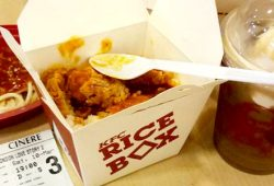 Varian & Harga Menu Rice Box KFC